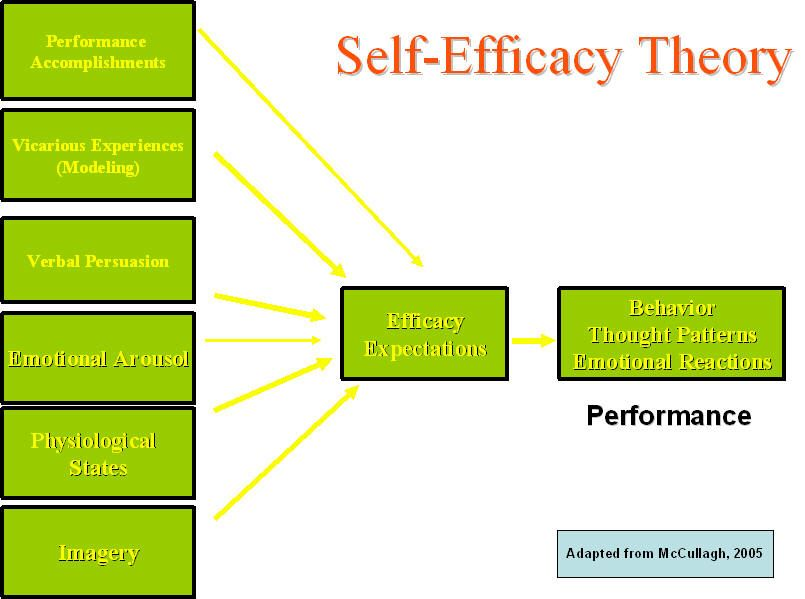 the concept of self efficacy essay It is the self-regulation of behavior by intelligent, affective and motivational processes self-efficacy is made up by self-concept, control, and cognitive processes ones self-concept is their thoughts and feelings about who and what they are it is influenced by social interactions and experiences.
