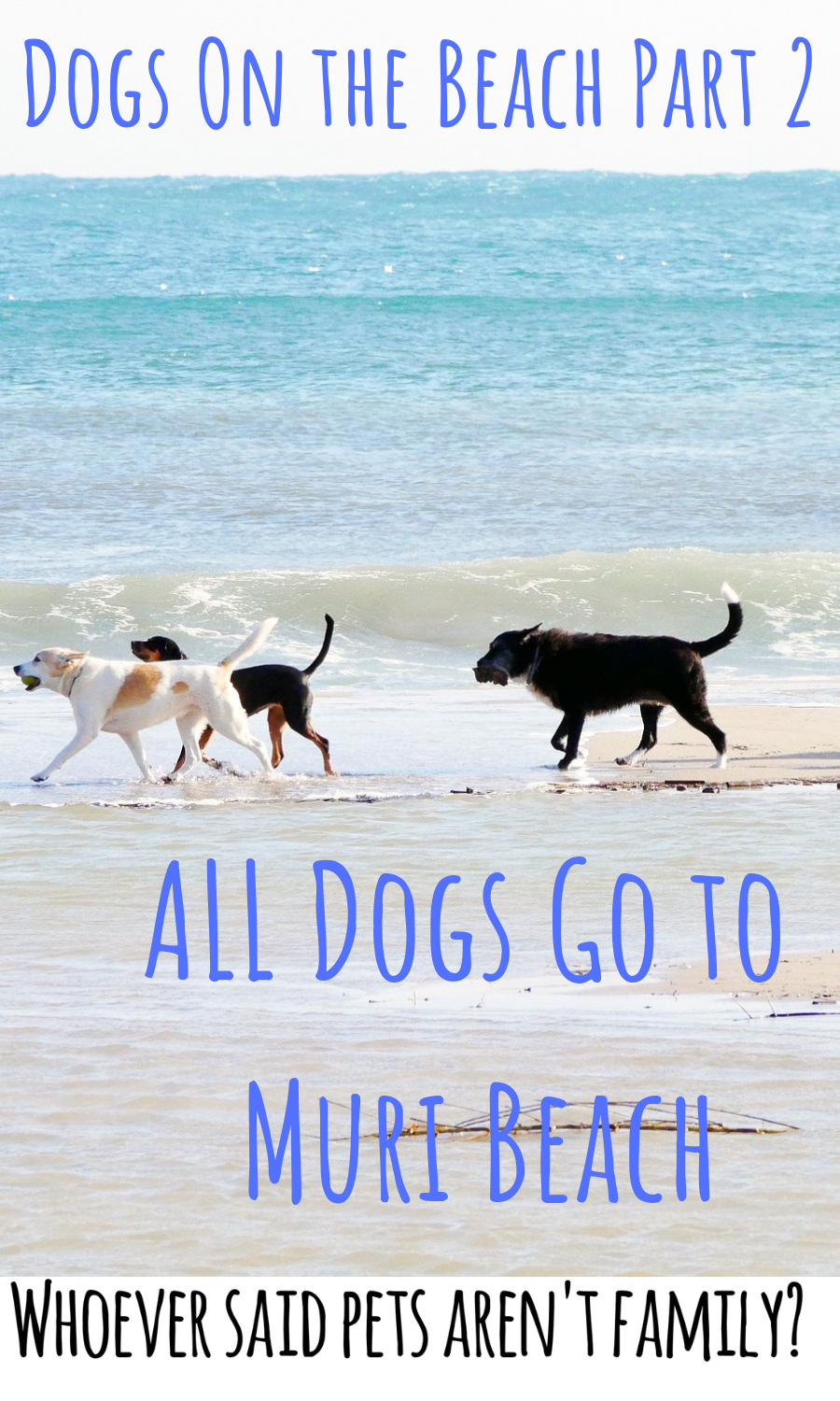 20 Dog Quotes For People Who Love Dogs Calm Dog Breeds Dog Quotes Dogs