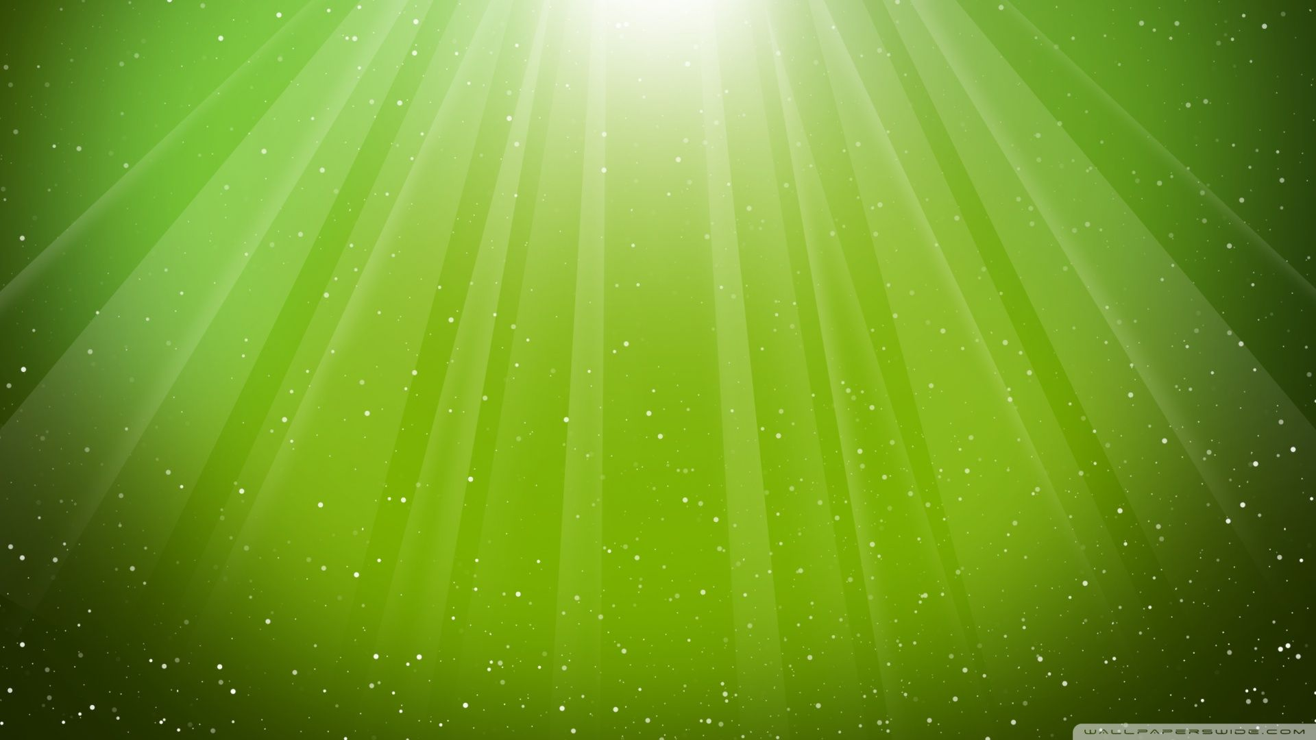 Light Green Hd Wallpaper