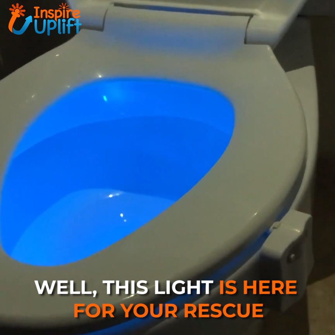 Strange Toilet Seat Light Glow 5 5 Youve Gotta Tinkle But You Caraccident5 Cool Chair Designs And Ideas Caraccident5Info