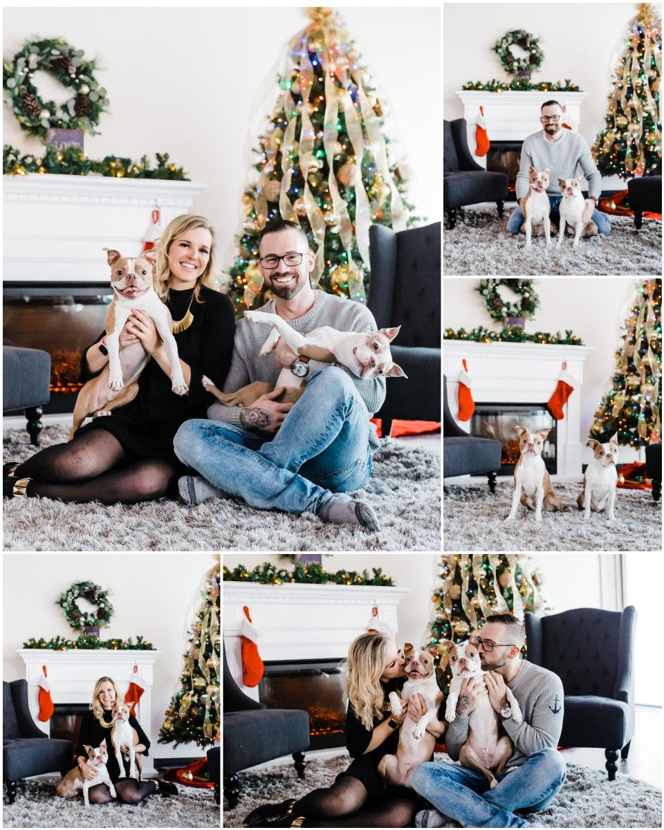Christmas Photos With Dog Kids Simply V Photography In 2020 Christmas Couple Photos Christmas Photoshoot Christmas Photos