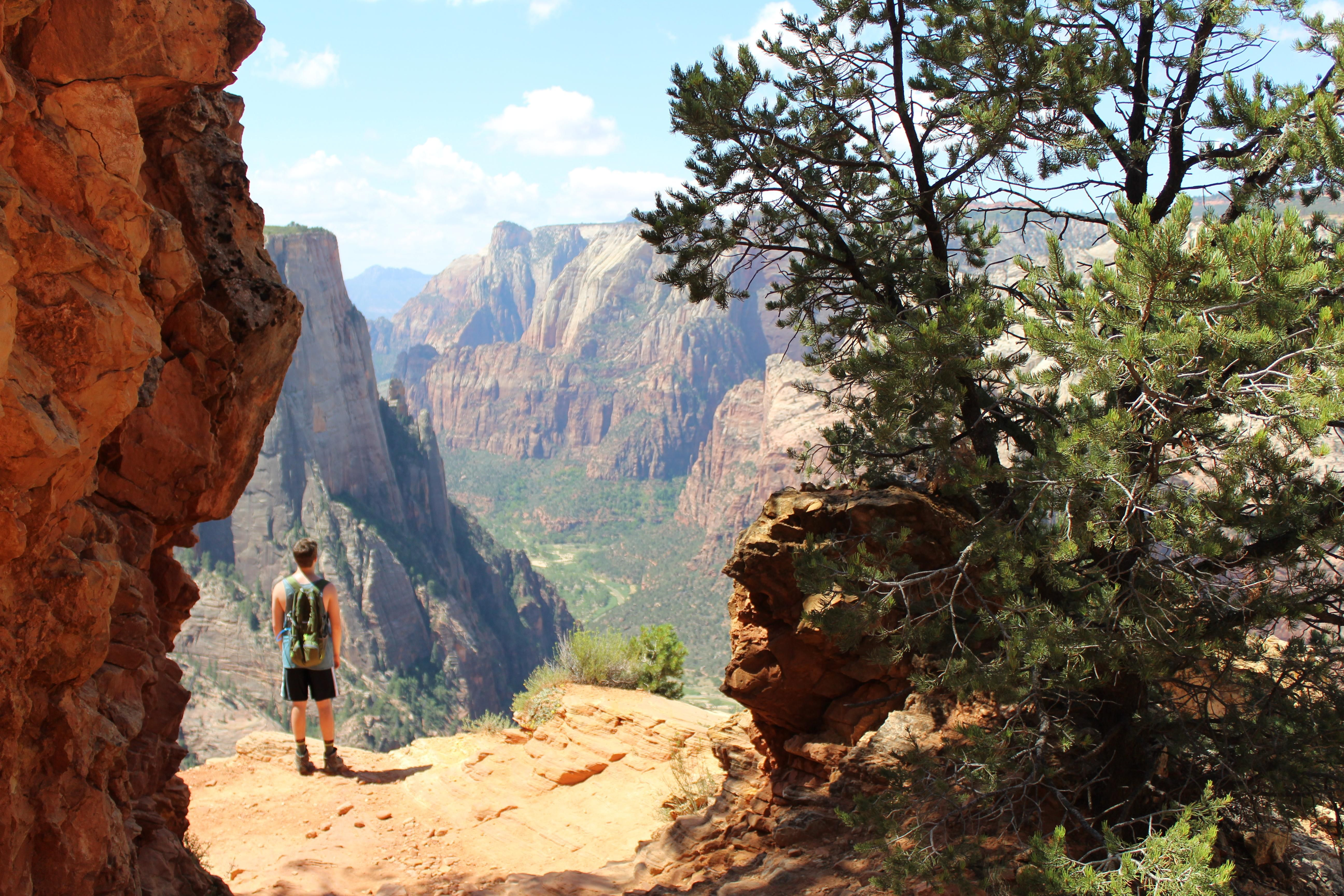 A Shot From My Hike Up To Observation Point In Zion National Park