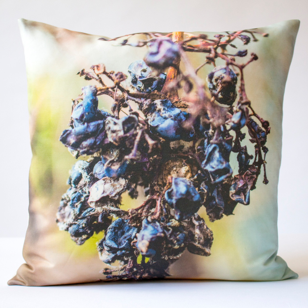 Raisin decorative pillow bedroom ideas pinterest pillows and