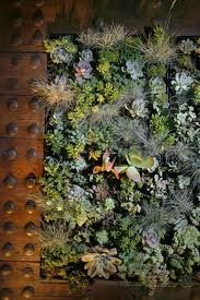 diy garden home - Recherche Google