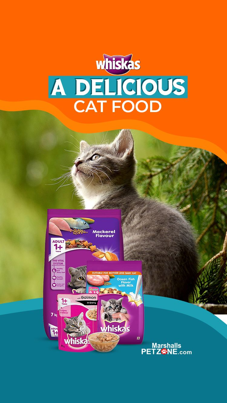 Whiskas A Delicious Cat Food In 2020 Cat Food Kitten Food Baby Cats