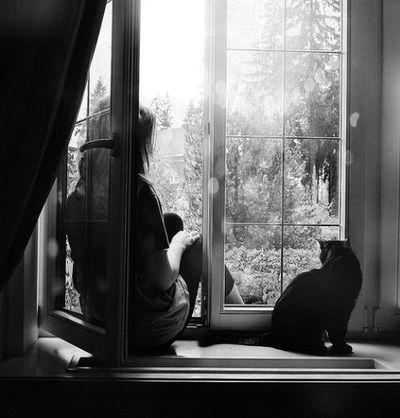 maybe-lisa: … lazy Sunday … wish You were here …
