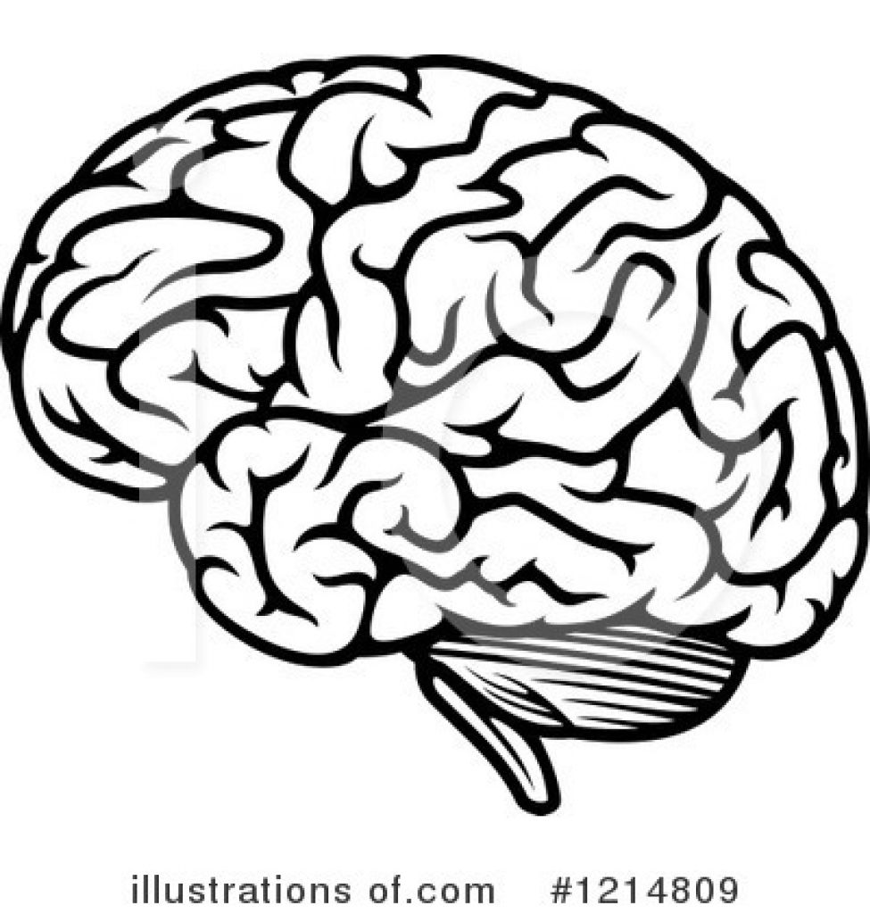simple brain clipart clipartsgram com [ 975 x 1024 Pixel ]