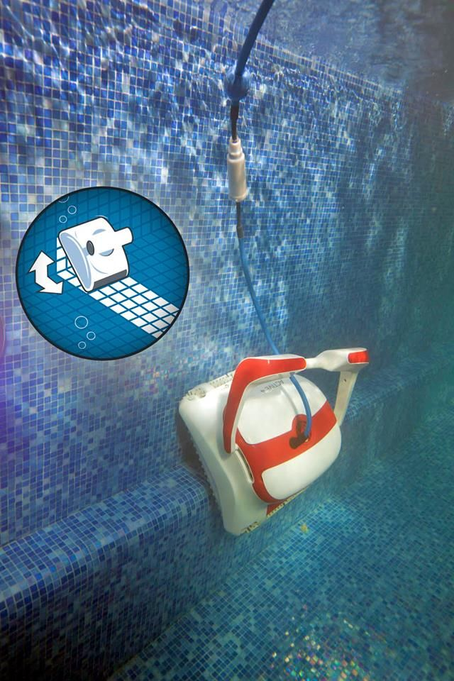 Footsteps Not A Problem Dolphin Pool Robot By