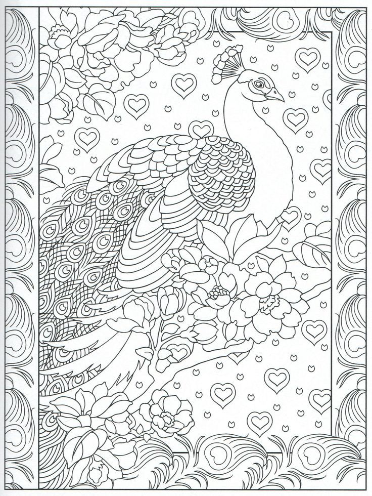Peacock feather coloring pages colouring adult detailed for Peacock crafts for adults