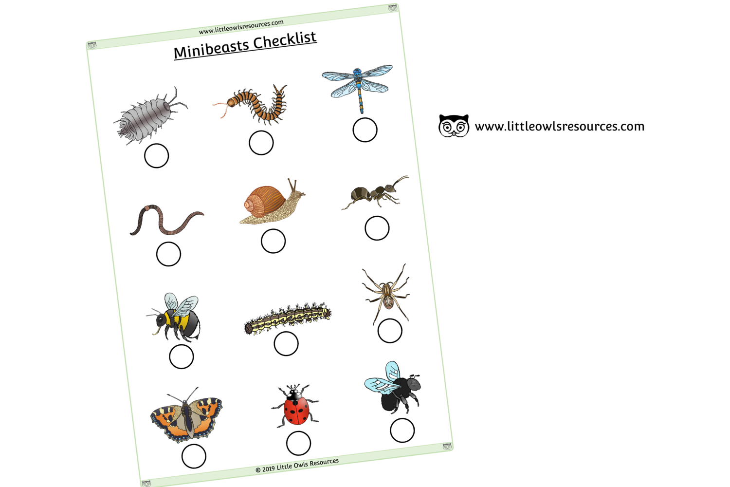 Free Minibeasts Checklist Printable Early Years Ey Eyfs
