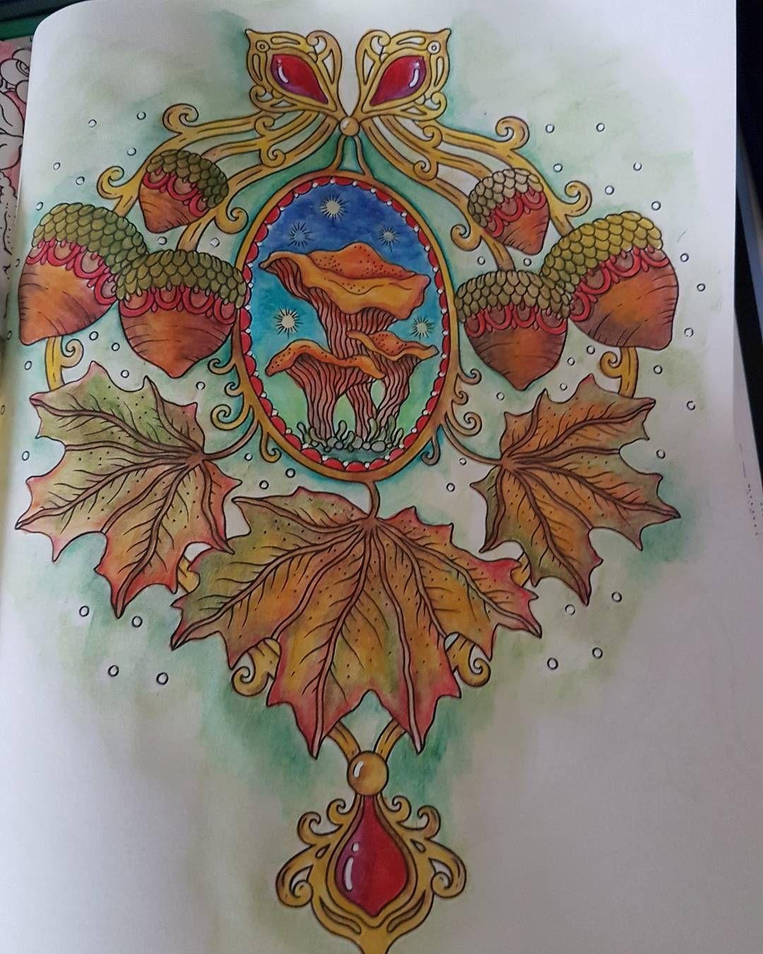 From seasons by Hanna karlzon using caran d ache supracolour pencils   #supracolour #hannakarlzon #seasons #pencils #watercolours #adultcolouring #colour #colouring #colouringpencils #colouringbook #carandache #posca