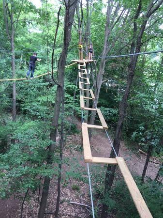 Go Ape Treetop Adventure Course Juegos