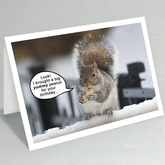 Funny Squirrel Greeting Card Birthday Card Cute Mothers Etsy In 2021 Squirrel Funny Birthday Greeting Cards Dad Birthday Card