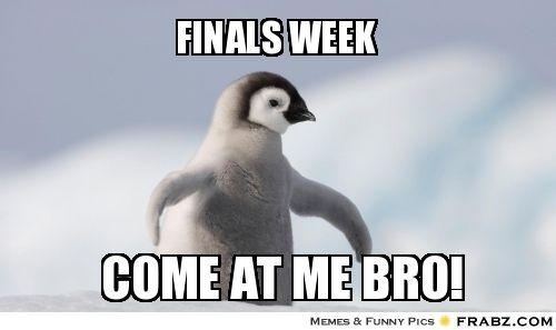 Studing for finals week?