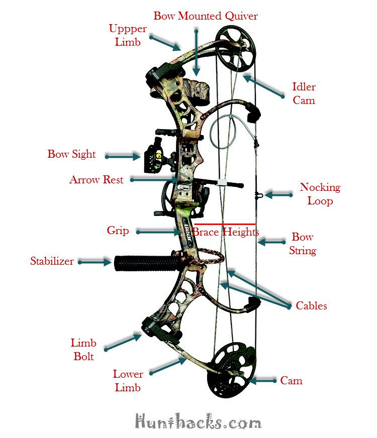 compound bow parts diagram compound bow pinterest. Black Bedroom Furniture Sets. Home Design Ideas