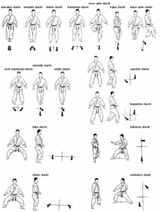 Basic Karate Stances Vo Thuật Vo Karate Kata