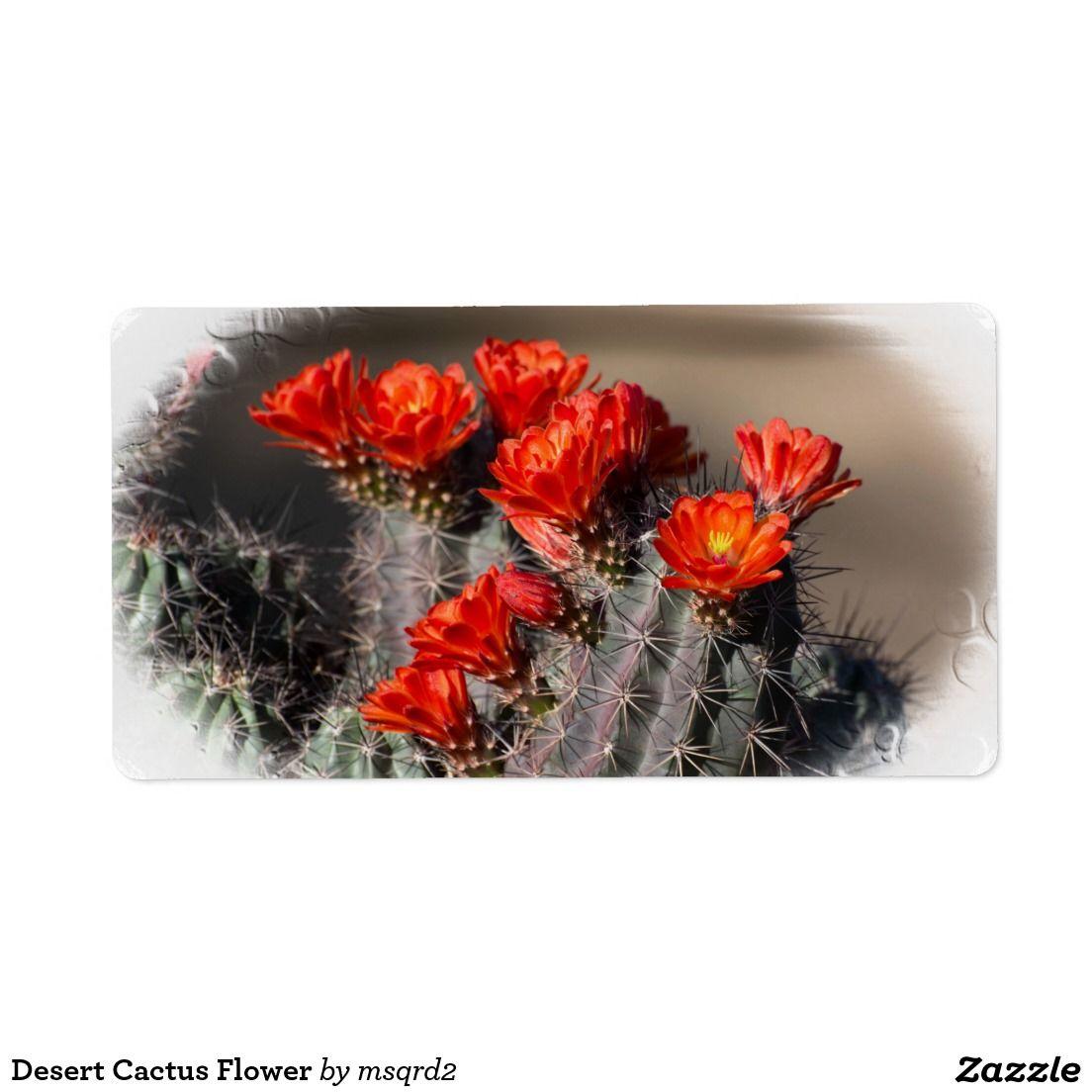 Desert Cactus Flower Label | Desert cactus and Cactus flower