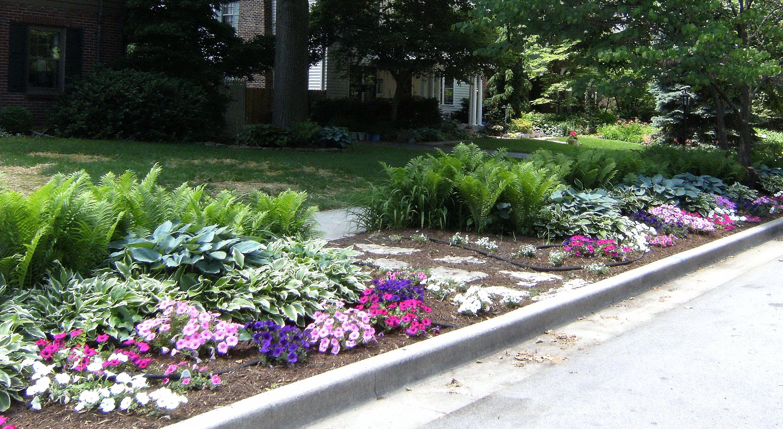 curbside garden