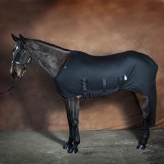 Spik Span Weatherproof Horse Under