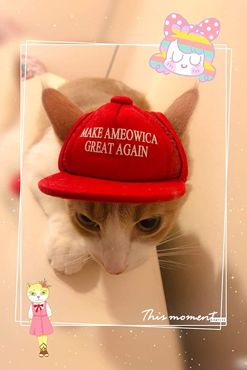 Pet Halloween Costumes Average Amount 2020 Unekorn Ultra Comfort Adjustable Make Ameowica Great Again MAGA