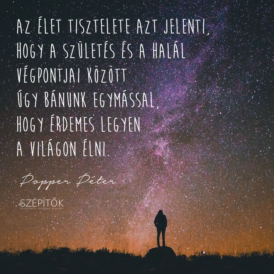 popper péter idézetek szerelem Popper Péter idézet | Life, Movie posters, Motivational quotes