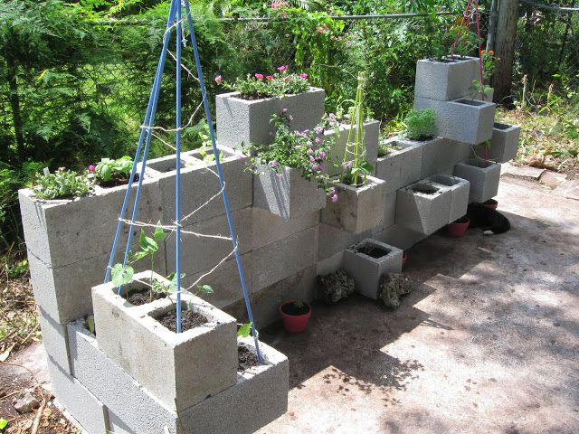 DIY Wall for the HERBS to grow......!