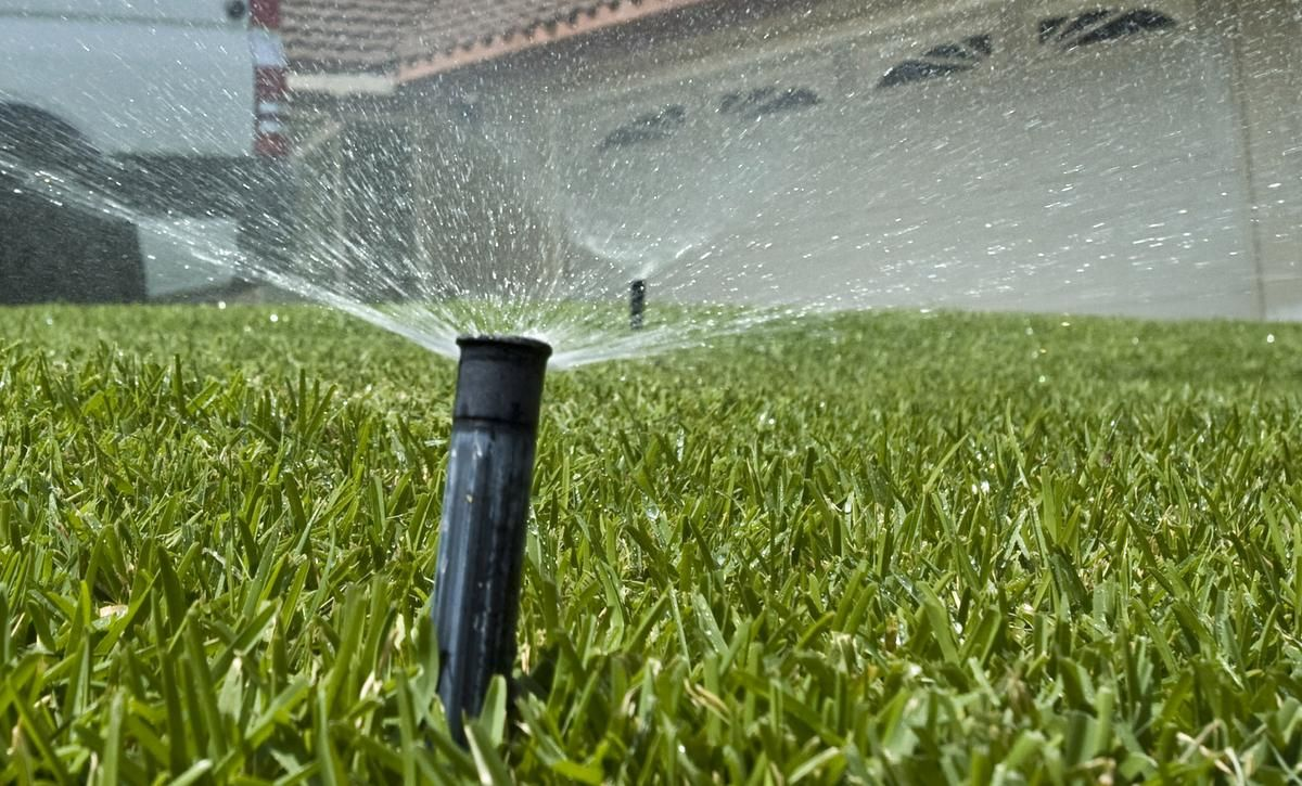 How Often Water Grass Seed In 2020 Grass Seed Watering Grass Water Grass