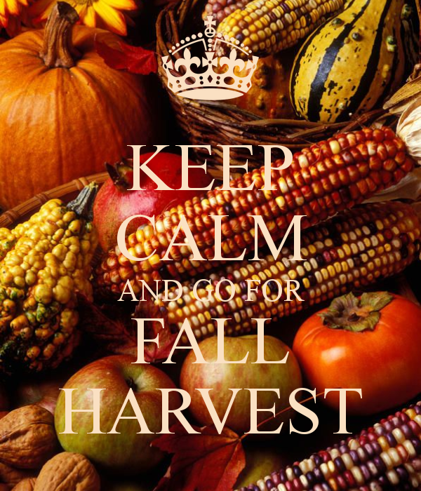 KEEP CALM AND GO FOR FALL HARVEST
