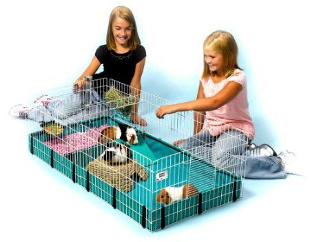 Amazon.com: Midwest Interactive Guinea Habitat Plus: Pet Supplies.neat..if i decide to get another giunea pig for millie I will have to buy a bigger habitat.