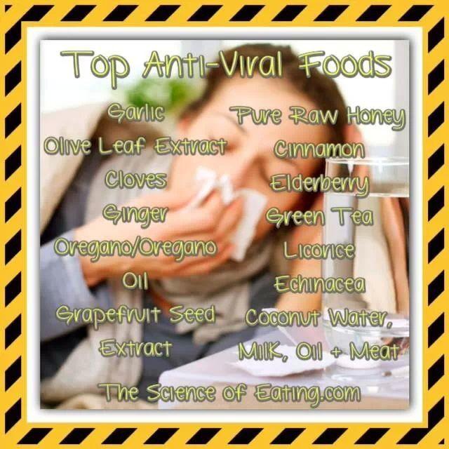 Antiviral foods! | Antiviral food | Natural cancer cures