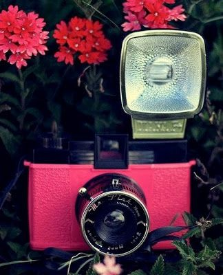 LOVE LOMO #fotografia #photography #camera #photo #vintage #camaras #life  #love #lomo #insta #polaroid #vintage