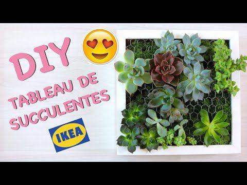 cadre v g tal avec plantes grasses ikea tableau de succulentes cadre v g tal plantes. Black Bedroom Furniture Sets. Home Design Ideas