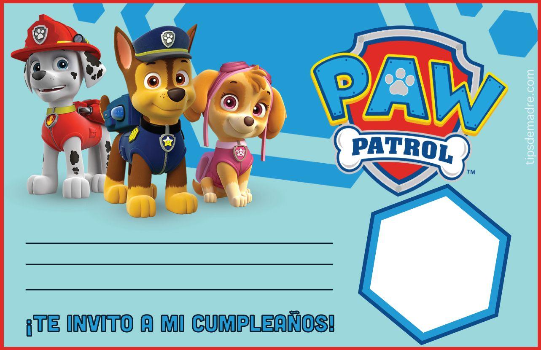Paw Patrol Entra En Acción Ideas Para Fiesta De