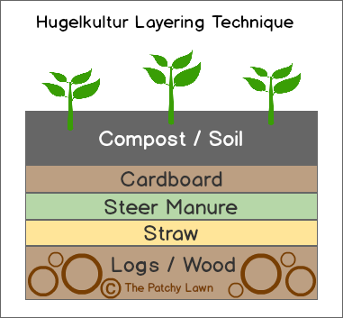 The best way to plant raspberries using hugelkultur and for Garden soil layers