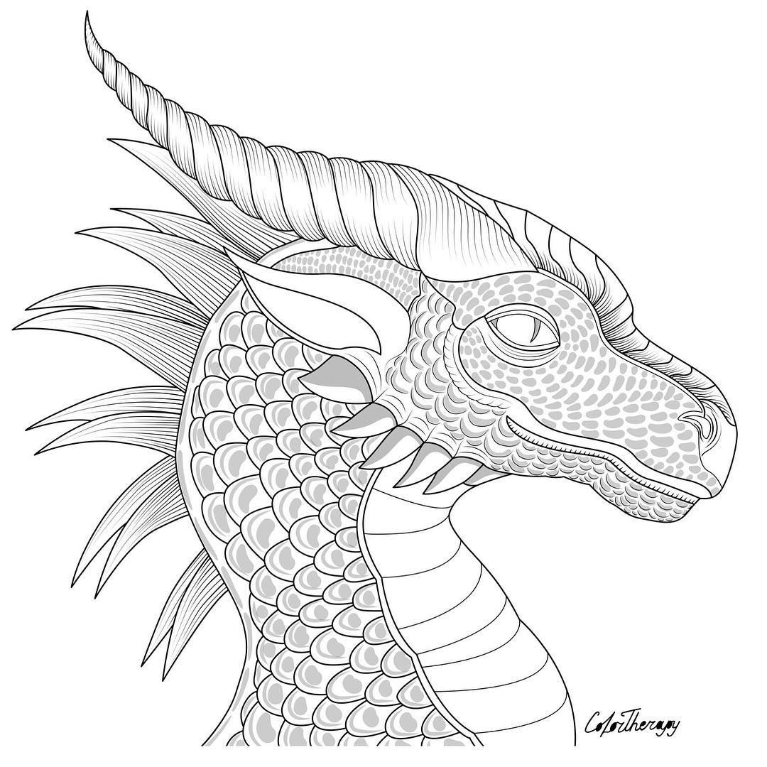 L Image Contient Peut Etre Dessin Dragon Coloring Page Free