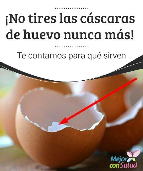 para que sirven las cascaras del huevo