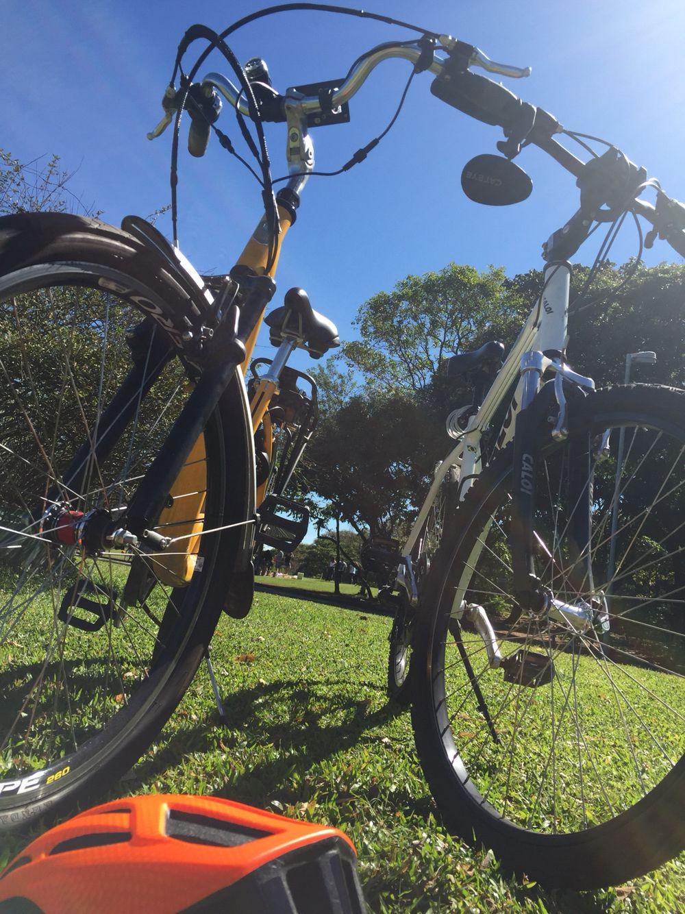 Andar de bike e curtir o dia de sol!