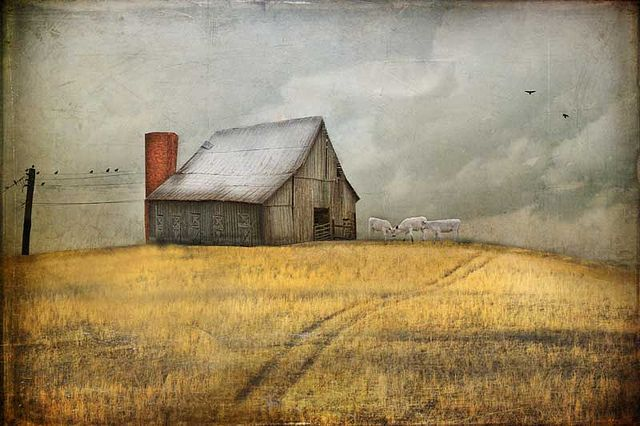 Remembering the Farmers by Cheryl Tarrant, Distressed Jewell, via Flickr