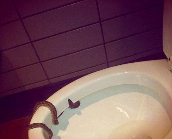 Bagno Uomini ~ Oltre fantastiche idee su bagno uomo su bagno in