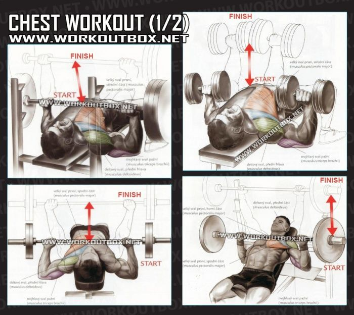 Workouts To Lose Chest Fat Best 5 Recommended By Experts: Healthy Fitness Exercises Gym Low