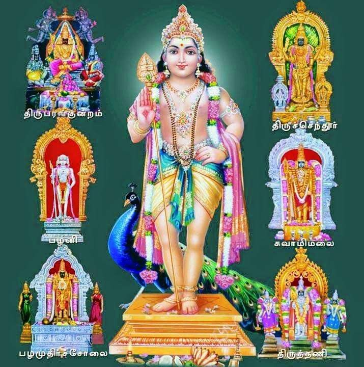 Arupadai veedu muruga   Hindu deities, Lord murugan, Hindu ...