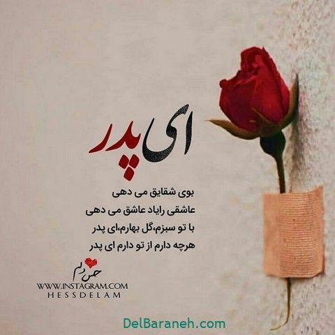پروفایل پدر ۴۴ عکس نوشته زیبا و عاشقانه پدرانه و روز پدر دلبرانه One Word Quotes Persian Quotes Afghan Quotes