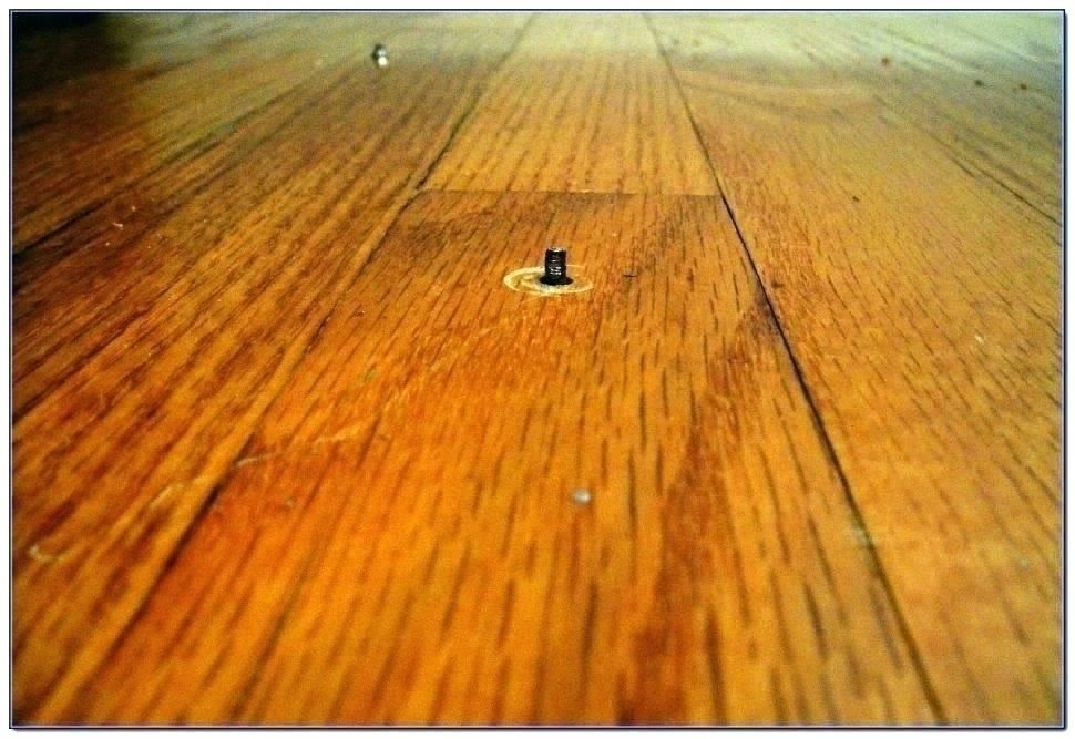 Perfect How To Stop Squeaky Wood Floors Under Carpet Flooring Creaky Floors Wood Floors