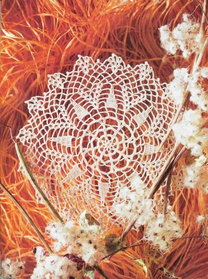 Picasa Web Albums - crochet doily. Good inspiration for a poncho or cape