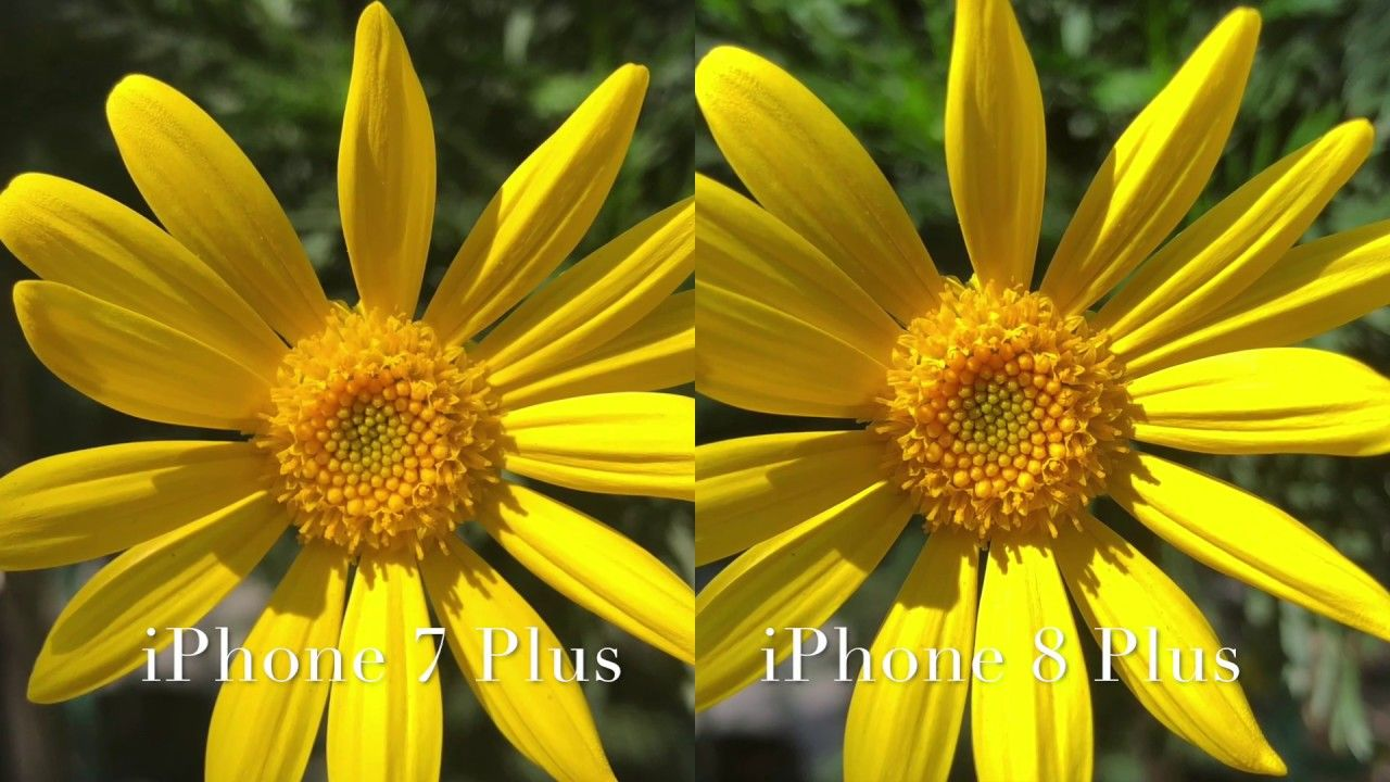 Iphone 8 Plus Vs Iphone 7 Plus Video Still Image Quality