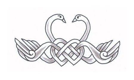 Image Result For Celtic Swan Tattoos Swan Tattoo Celtic Designs Celtic Knotwork