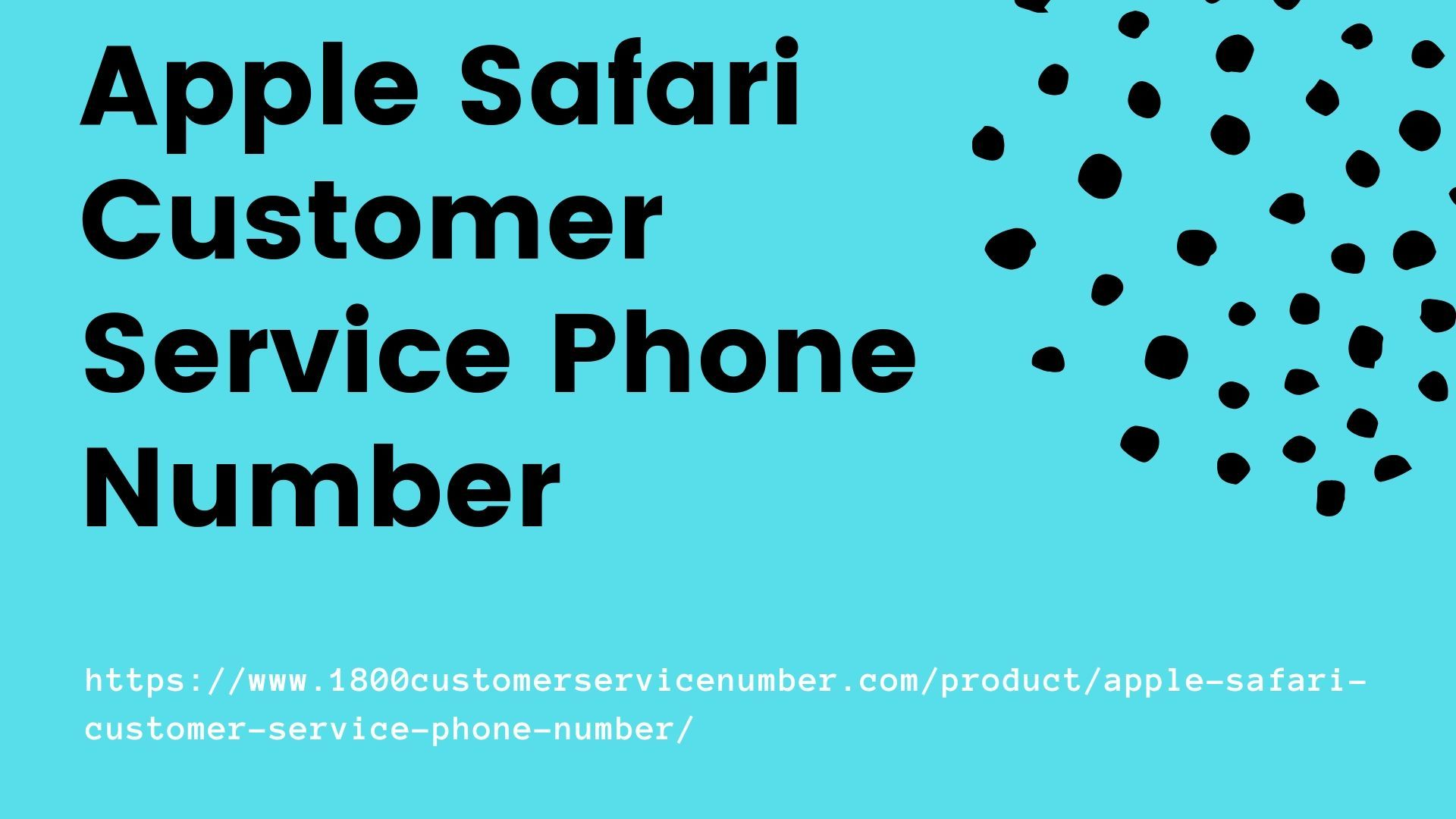 Business Customer Service Phone Number in 2019 Customer