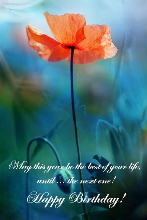 52 Sweet Or Funny Happy Birthday Images My Happy Birthday Wishes Beautiful Flowers Flowers Poppies