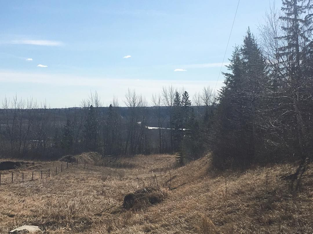 The view of the North Saskatchewan River Valley from 6 51112 RR 260! A 1.87 acre parcel of land recently reduced to $599000. Visit www.doncholak.com for more info!