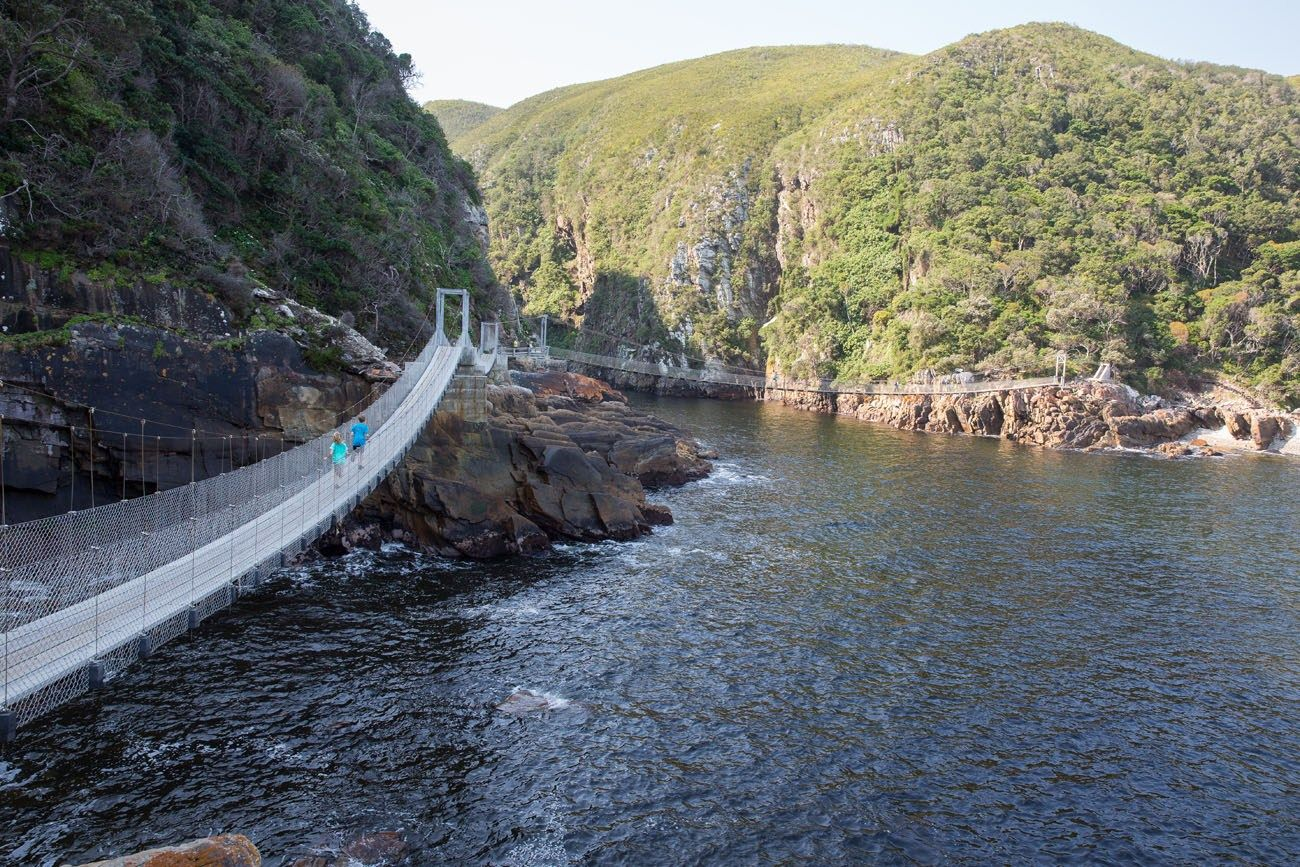 Road Trippin' on the Garden Route of South Africa